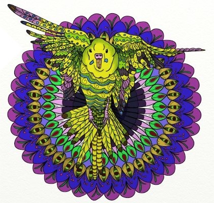 """Colorful Flying Budgie Mandala"" by Lorraine Kelly"